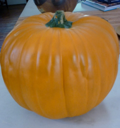 Start with an uncarved or craft pumpkin