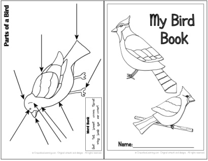 Bird Watching Book Think Crafts By Createforless