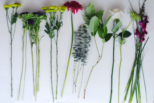 5 - separated and cut flowers