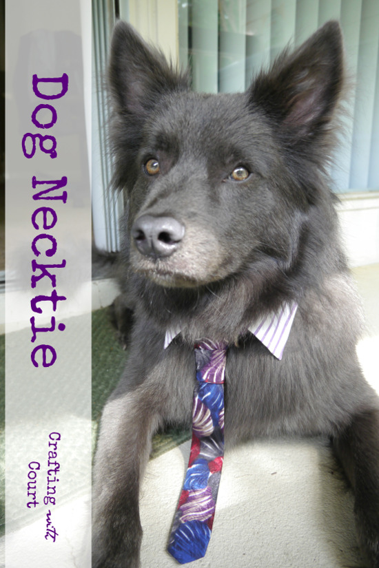 DIY Dog Necktie