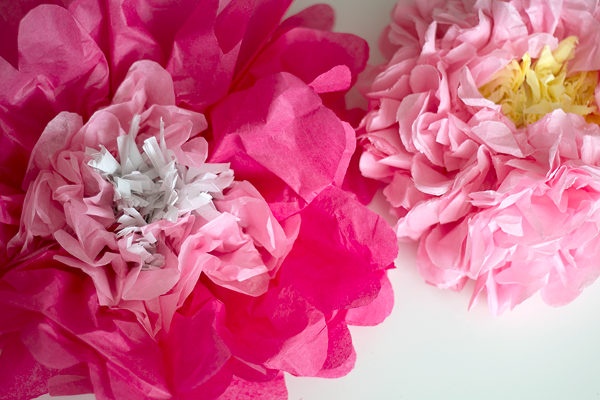 Fluffy Tissue Paper Flowers