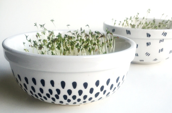 DIY Painted Sprout Planters
