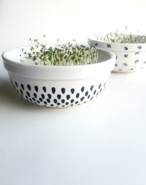 Get excited about living a healthy lifestyle with pretty hand painted planters to hold cress sprouts!
