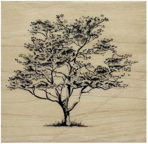 inkadinkado-wood-stamp-small-dogwood