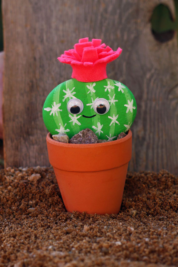 Create a cactus pet for your home that you can enjoy without any responsibility