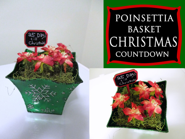 Countdown to Christmas with a fun basket full of poinsettias